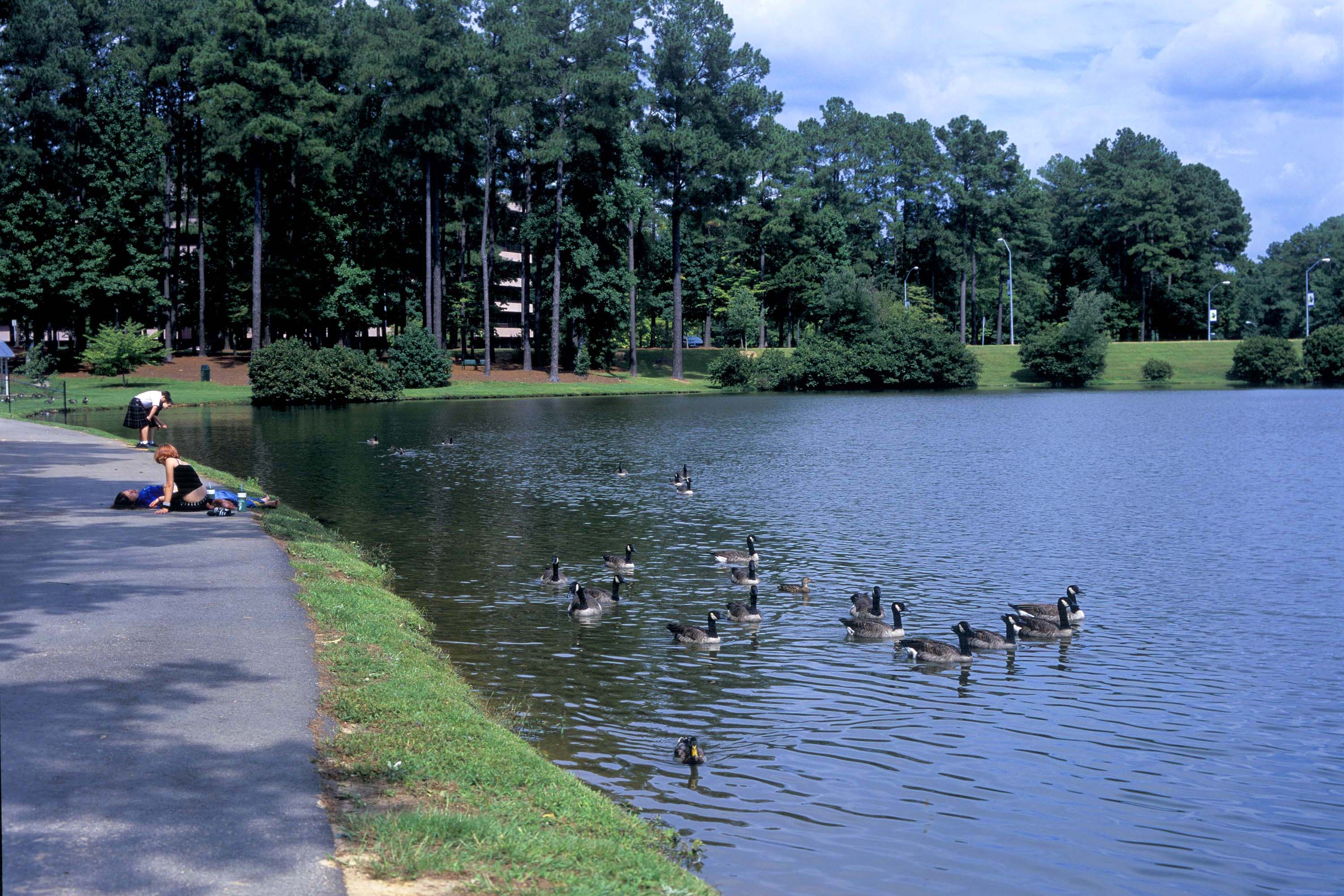 Outdoors and parks in Cary NC